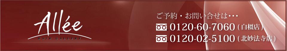 ���ɸ��ึ�Ԥˤ���إ���������Ƽ����إ������Allee(����)